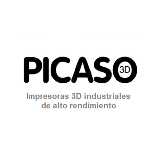 Picaso 3D